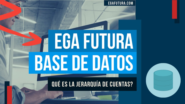 Que es la Jerarquía de cuentas en EGA Futura?