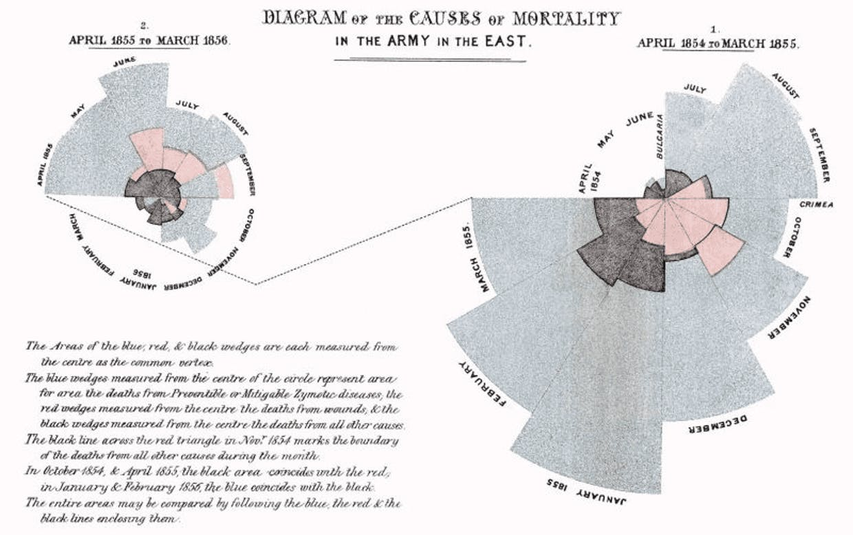 Diagram of the causes of mortality
