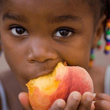 Garden Snacks & Permaculture Recipes
