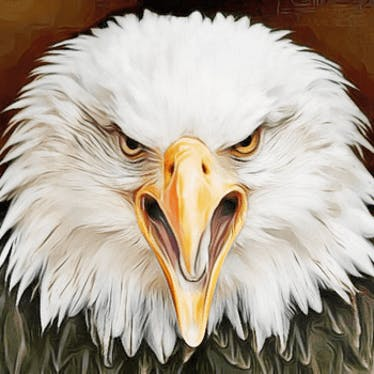 PATRIOT [Conservative Constitutionalist] ACTION GROUP