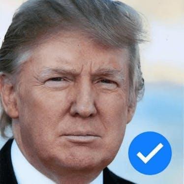 Donald J Trump ✅