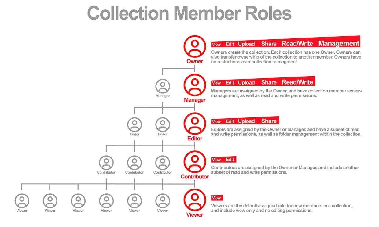 Collection Member Roles