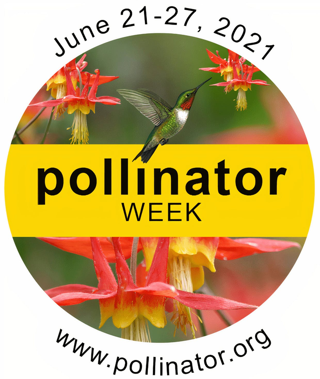 This week we celebrate pollinators, essential partners to our Nation's food system.
