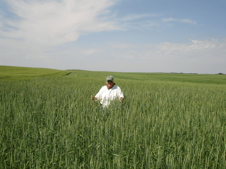 Augusta sitting in a field of spelt in South Dakota (Courtesy of Augusta Martyniuk)