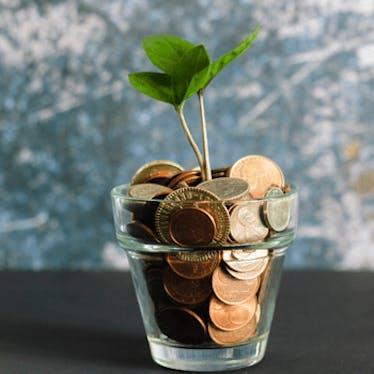 Funding & Fellowships