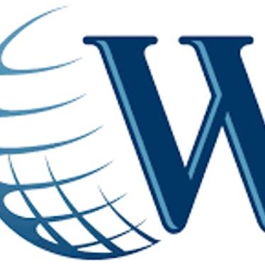 WSI Partners
