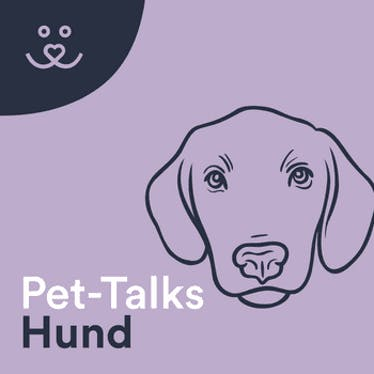 Pet-Talks: Hund