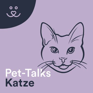 Pet-Talks: Katze