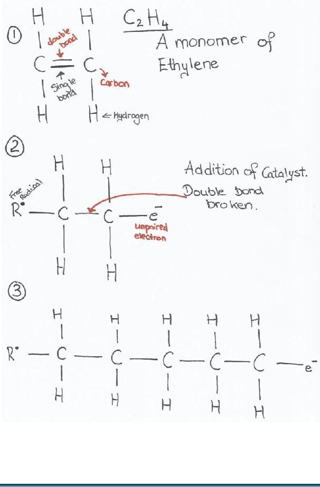 Addition Polymerizations of an ethylene molecule.