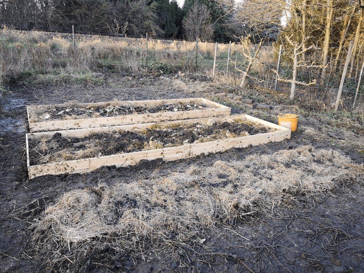 First three beds