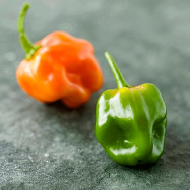 Share Pepper Pics