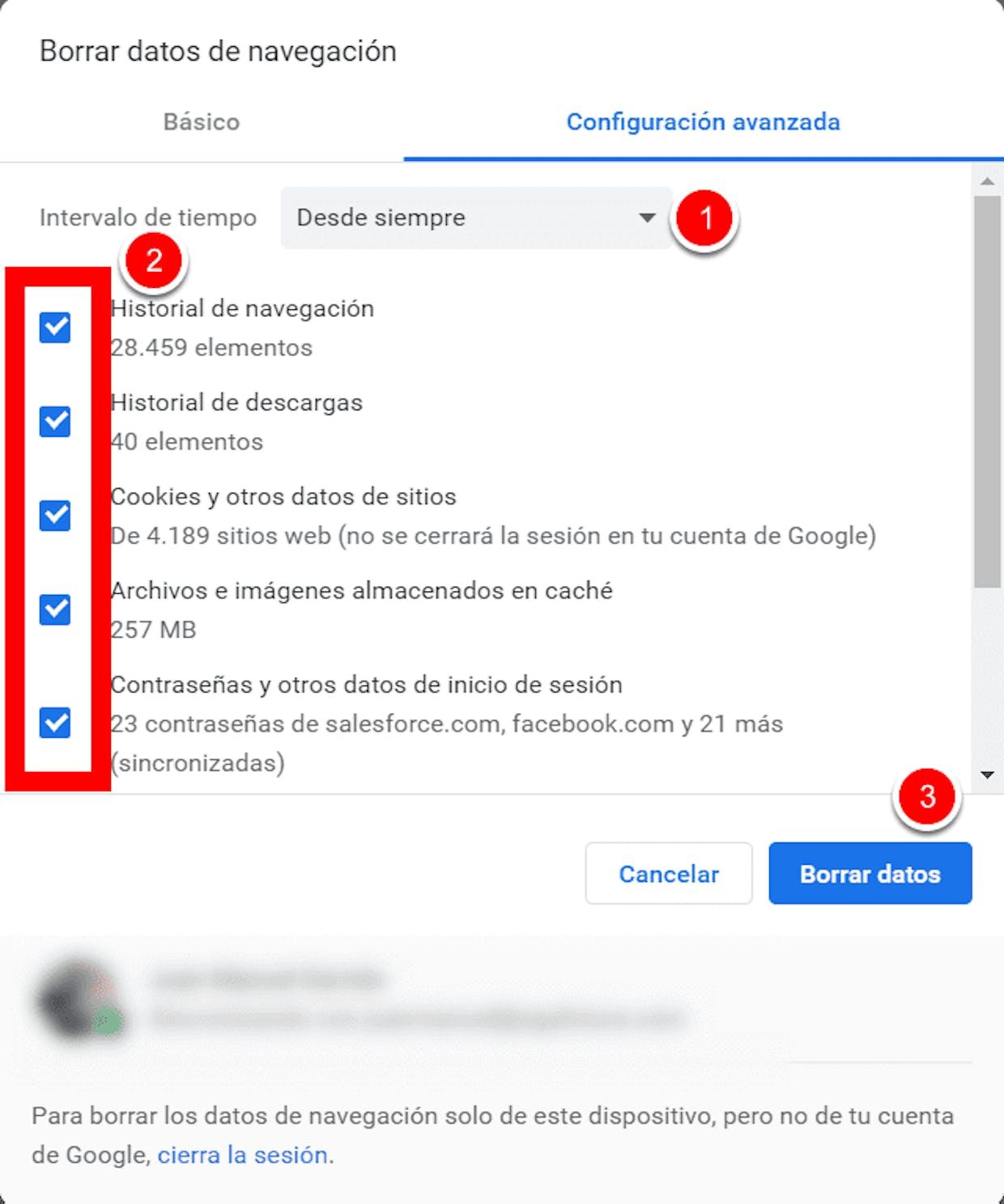 Como se borra el cache de Google Chrome para solucionar un problema de ejecución de EGA Futura?