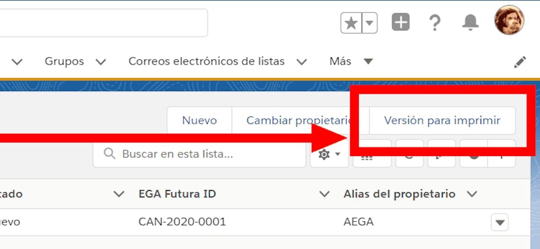Es posible imprimir la informacion dentro de una Vista de lista?