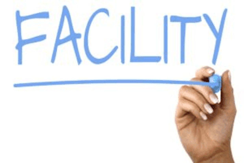 How govt. Act as a business facilitator?