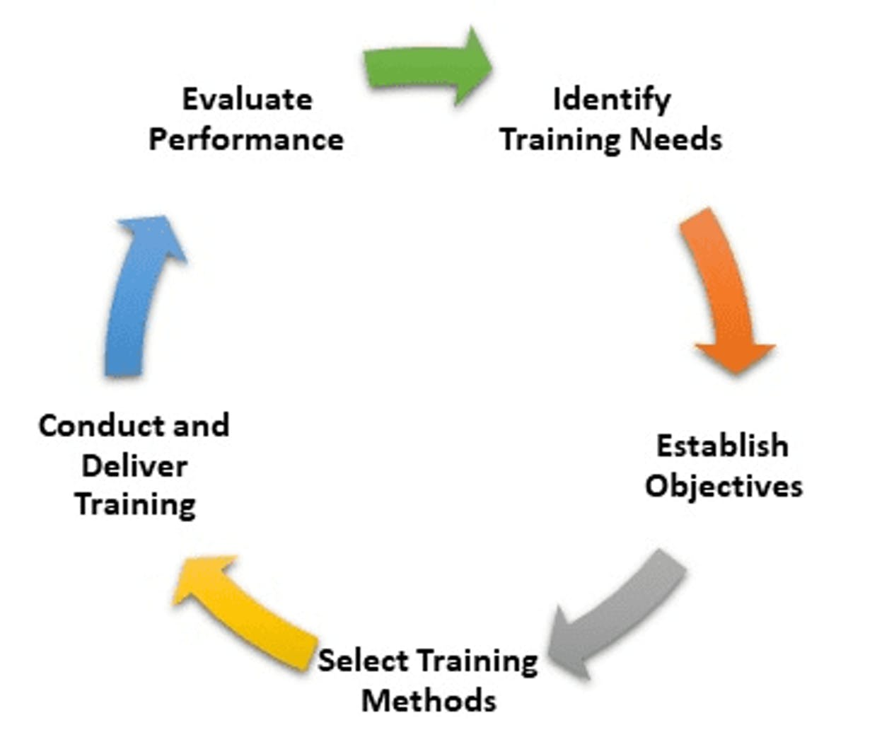 What is the process of training and development?