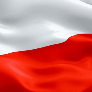 Polish Militaria (All Wars)
