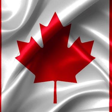 Canadian Militaria