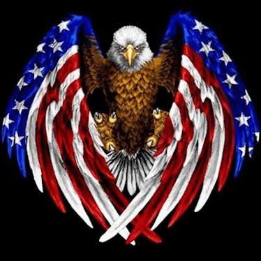 United Patriots