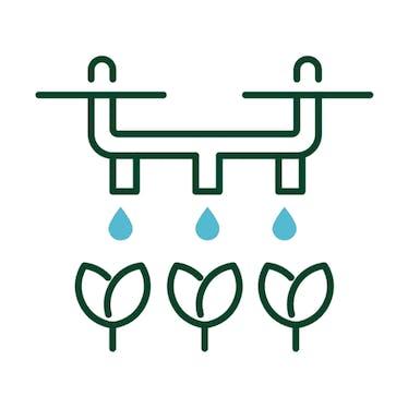 drip water irrigation
